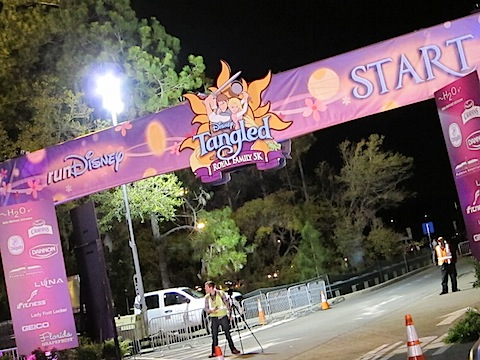 IMG 1058 Disney Tangled Royal Family 5K
