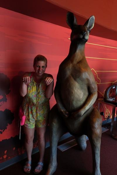 Kangaroo Sydney Zoo
